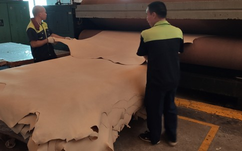 What are the characteristics of vegetable tanning leather?